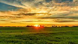 The sun sets over a blanket of velvet green grass in this rural landscape in Missouri