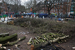 Trees in Euston Square Gardens felled by National Eviction Team bailiffs working on behalf of HS2 Ltd are pictured on 6th February 2021 in London, United Kingdom. The bailiffs have been working for eleven days to remove environmental activists from anti-HS2 campaign group HS2 Rebellion from tunnels dug by them beneath Euston Square Gardens in order to try to protect its trees from felling in connection with the HS2 high-speed rail link.