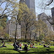 A tranquil scene as people relax during a warm spring day in Central Park, Manhattan, New York, USA. Photo Tim Clayton