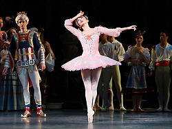 The Sleeping Beauty <br />