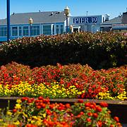 Pier 39 sign, San Francisco