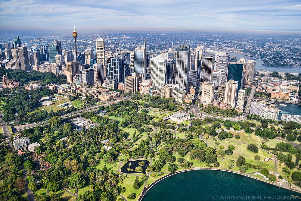 Royal Botanic Gardens & Sydney City Centre