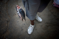 cuban man holding two fish on lines