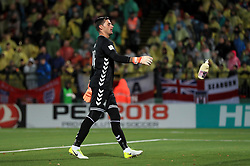Lithuania goalkeeper Vykintas Slivka removes a bottle that was thrown onto the pitch during the 2018 FIFA World Cup Qualifying Group F match at the LFF Stadium, Vilnius.
