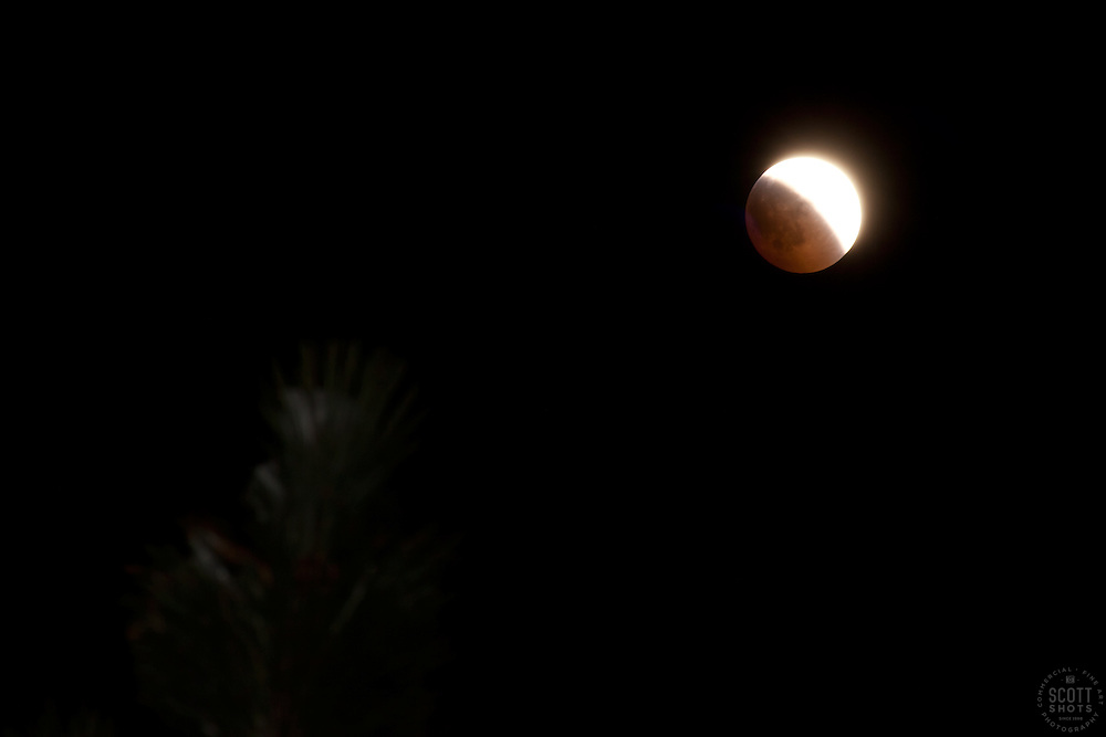 """""""Lunar Eclipse on Winter Solstice 2"""" This very special total lunar eclipse was photographed on 12-20-2010 in the Tahoe Donner area of Truckee, CA."""