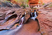 Image of stream erosion through sandstone along Coyote Creek, Coyote Gulch, Grand Staircase-Escalante National Monument, Utah.