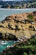 La Jolla Cave San Diego