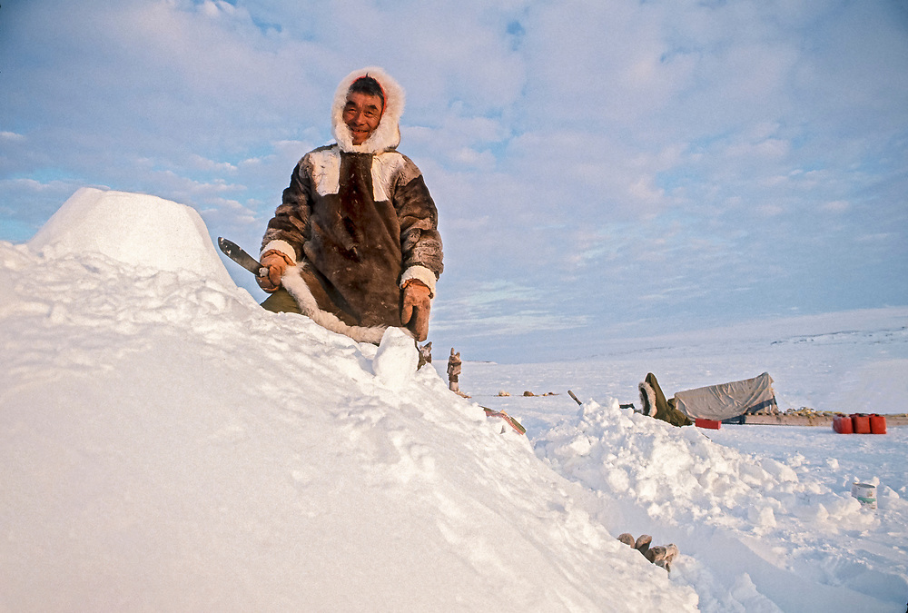 Inuit elder man, mid 60s, dressed in traditional caribou skin clothing, works atop a traditional igloo with a knife used for igloo building. Actual igloos are not left with blocks showing. When the blocks are in place, the igloo is covered with snow for further insulation. A traditional sled (komatik) can be seen in background.