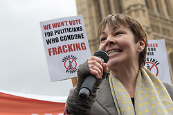 © Licensed to London News Pictures. 26/01/2015. London, UK. Protestors take part in an anti-fracking rally opposite the Houses of Parliament in Westminster, London today.. Photo credit : Vickie Flores/LNP