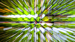 """Esteio/RS, 26/08/2018 - Espaço Vinho Gaúcho dentro do Salão do Empreendedor que está ocorrendo na Expointer 2018, dará nesta edição, destaque para as cadeias produtivas da Soja, Pecuária do Corte e Vinicultura, com a perspectiva """"Do Campo à Mesa"""". O espaço está localizado no Pavilhão Internacional do Parque de Exposições Assis Brasil, em Esteio/RS, de 25 de Agosto a 02 de Setembro. Foto: Marcos Nagelstein/ Agência Preview"""