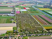 Nederland, Noord-Holland, Gemeente Schagen, 07-05-2021; Sint Maartensvlotbrug. Het Wildrijk, oorspronkelijk aangelegd als buitenplaats. Het perceel bos is bekend om de wildehyacinten.<br /> <br /> luchtfoto (toeslag op standaard tarieven);<br /> aerial photo (additional fee required)<br /> copyright © 2021 foto/photo Siebe Swart