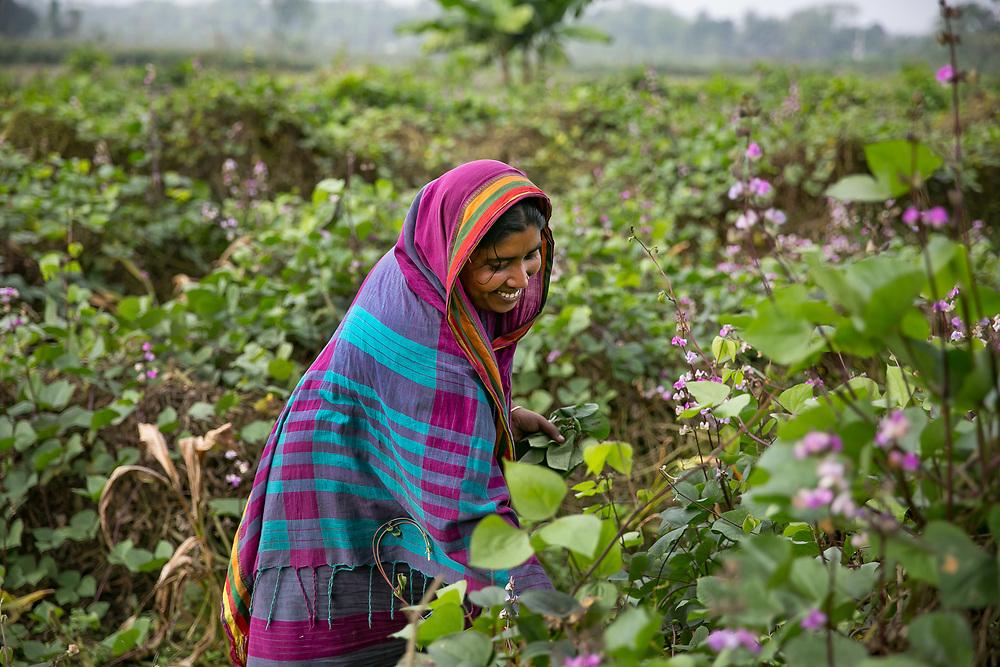 INDIVIDUAL(S) PHOTOGRAPHED: Shikha Akhter. LOCATION: Narayanganj, Bangladesh. CAPTION: Shikha Akhter cheerfully goes about her work at a farm in Narayanganj, Bangladesh.