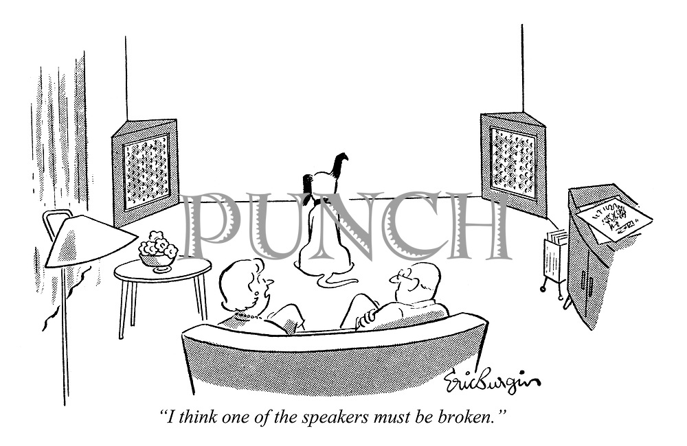 """I think one of the speakers must be broken."""