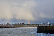 Uitzicht vanaf het zuidelijk havenhoofd naar Scheveningen. | View from the southern pier to Scheveningen.