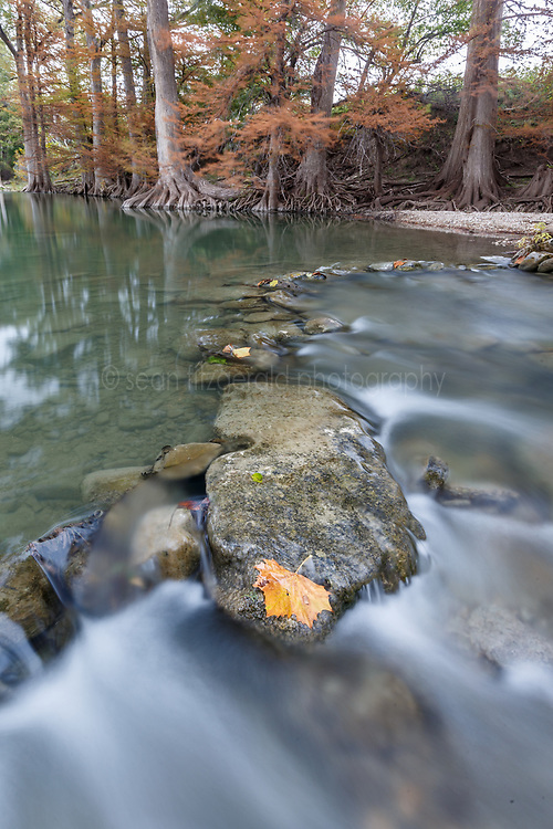 Guadalupe River and fall color James Kiehl River Bend Park, Comfort, Texas USA