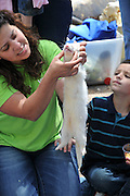 Handler handling a ferret at a petting zoo