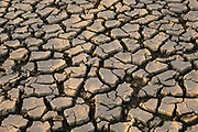 Nederland, Deest, 2-7-2019 Drooggevallen oever van een zijgeul, gegraven als waterberging ihkv ruimte voor de rivier, van de Waal . Door de lage waterstand is de klei opgedroogd en gebarsten.Foto: Flip Franssen