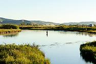 Fly Fishermen fishing Silver Creek East