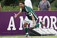 20091129: SAO PAULO, BRAZIL - Palmeiras vs Atletico-MG: Brazilian League 2009. In picture: Cleiton Xavier (Palmeiras) celebrating goal. PHOTO: CITYFILES