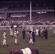 """30/06/1962 <br /> 06/30/1962<br /> 30 June 1962<br /> Irish Sweeps Derby at the Curragh Racecourse, Co. Kildare. general view of the  parade in front of the reserved enclosure for the Derby. The horses were shown and mounted on the course. Horse in image is """"Snowhound""""."""