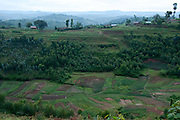 Rwanda. Landscape near Butaré showing intense cultivation of vegetable crops in the valley with forested slopes