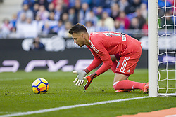 November 19, 2017 - Barcelona, Catalonia, Spain - Valencia CF goalkeeper Neto (13) during the match between RCD Espanyol vs Valencia CF, for the round 12 of the Liga Santander, played at RCD Espanyol Stadium on 19th November 2017 in Barcelona, Spain. (Credit Image: © Urbanandsport/NurPhoto via ZUMA Press)