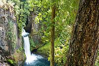Tokatee Falls trail on the North Umpqua River. Cascade Mountains, Oregon.