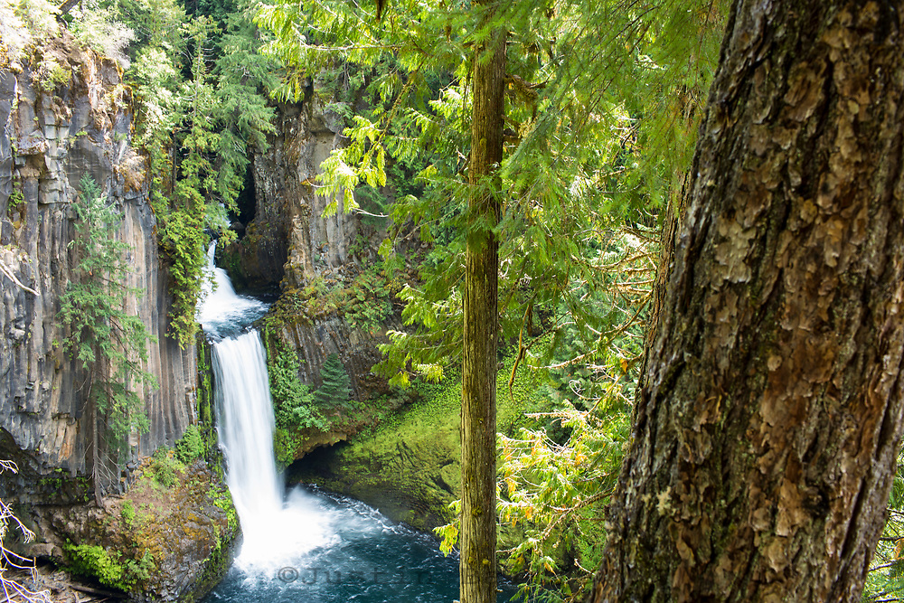 Tokatee Falls trail on the North Umpqua River. Cascade Mountains, Oregon.