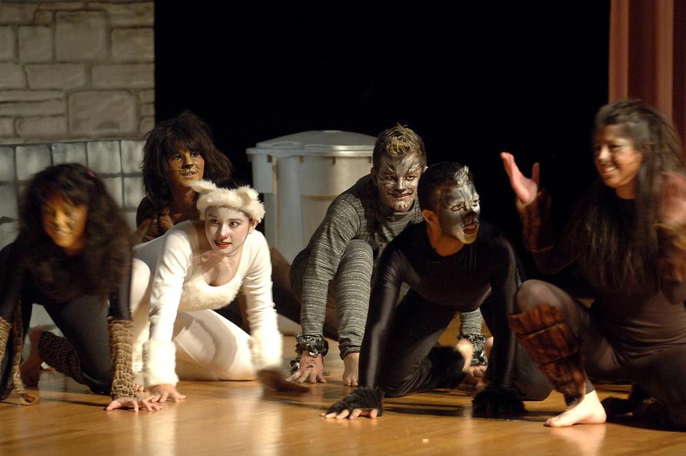 "Brownsville, TX January, 2006:  Students perform Andrew Lloyd Webber's ""Cats"" at Lopez High School auditorium. <br /> ©Bob Daemmrich/"