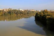 Treelined channel of river Rio Guadalquivir in city centre, Cordoba, Spain
