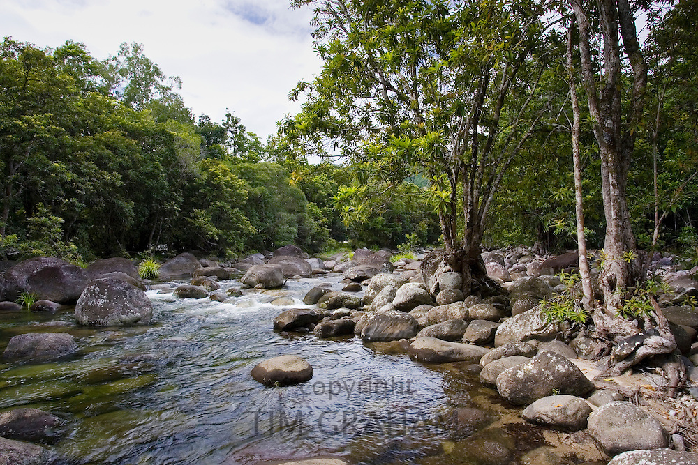 The Mossman River in the Daintree Rainforest, Queensland, Australia