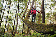 Parmenter Welty stands on a tree growing horizontally, looking up at the canopy, along the trail to Third Beach, Olympic National Park, Washington.