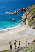 Central Coast in Big Sur California