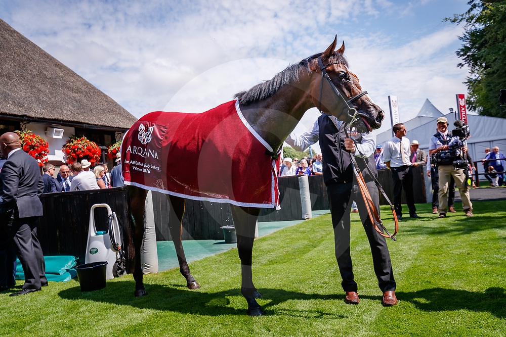 Advertise (F. Dettori) wins The Arqana July Stakes Gr.2 in Newmarket, 12/07/2018, photo: Zuzanna Lupa