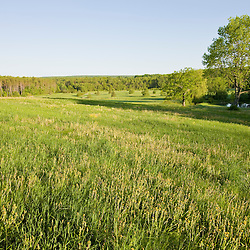 Early morning in a field at Highland Farm in York, Maine.