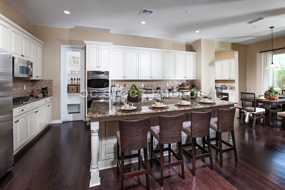 Neutral Color Kitchen with White Cabints and Dark Wood Floors