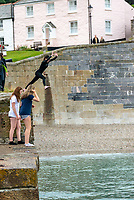 Kids Tombstoning of the Port Walls in Charlestown near St Austell Bay Cornwall  photo mark anton smith