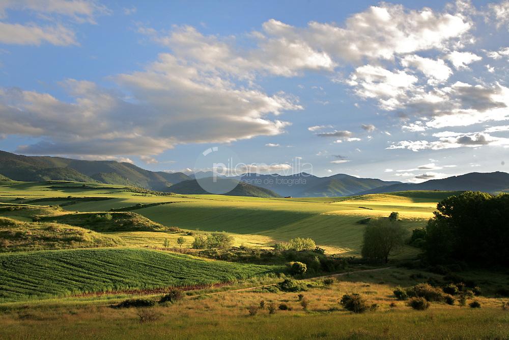Valle de Cardenas. La Rioja ©Daniel Acevedo / PILAR REVILLA