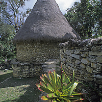 A bromeliad grows in front of a reconstructed circular house at Kuelap, a stronghold of the pre-Incan Chachapoyan culture that dominated northern Peru about 600 years ago.