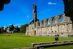 The ruins of St Andrews Cathedral, Fife, Scotland<br /> <br /> (c) Andrew Wilson | Edinburgh Elite media