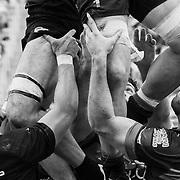 20180922 Rugby, Top12 : Petrarca Padova vs Rovigo