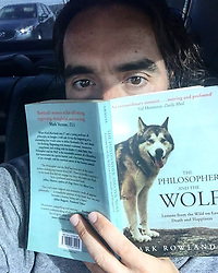 """Russell Brand releases a photo on Twitter with the following caption: """"""""To help me understand myself. And my dog. Mostly my dog.<br /> https://t.co/OBp8yETz4b"""""""". Photo Credit: Twitter *** No USA Distribution *** For Editorial Use Only *** Not to be Published in Books or Photo Books ***  Please note: Fees charged by the agency are for the agency's services only, and do not, nor are they intended to, convey to the user any ownership of Copyright or License in the material. The agency does not claim any ownership including but not limited to Copyright or License in the attached material. By publishing this material you expressly agree to indemnify and to hold the agency and its directors, shareholders and employees harmless from any loss, claims, damages, demands, expenses (including legal fees), or any causes of action or allegation against the agency arising out of or connected in any way with publication of the material."""