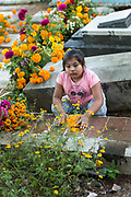 A young Mexican girl at the gravesite of relatives for Day of the Dead festival known in Spanish as Día de Muertos at the old cemetery October 31, 2013 in Xoxocotlan, Mexico. The festival celebrates the lives of those that died.
