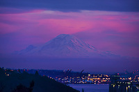 JANUARY 14TH:  Rainier en Rose