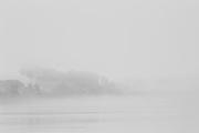 Brazil, rio Madeira, Rondonia.<br /> <br /> Le developpement economique en dent-de-scie est caracteristique de l'Amazonie bresilienne. Apres une forte croissance due a l'exploitation de l'hevea , l'activite s'arrete. <br /> Jusqu'a la fin des annees 60, le Rondonia est a l'image de tous les autres territoires federaux : un immense vide forestier balise de rares communautees plantees au bord des fleuves et sillonne de tribus indiennes semi-nomades, de bandes de seringueiros et de chercheurs d'or ou de diamant. Sa population ne depasse pas 100 000 personnes. Dans les années 70, le Plan d'Integration Nationale introduit le Rondonia au nombre des zones de colonisation prioritaires. En 1990 le Rondonia compte 1,5 million d'habitants.