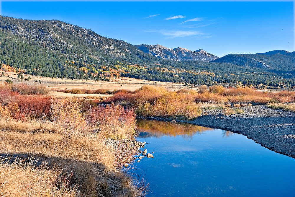 small creek in early morning autumn light, Hope Valley California