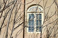 Leafless trees cast late autumn shadows on an adobe wall, Arizona