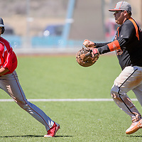 032815       Cable Hoover<br /> <br /> Gallup Bengal Jimmy Gomez (25) chases after Bernalillo Spartan Jacob Aragon (12) in a rundown between first and second base Saturday at the Gallup Sports Complex.