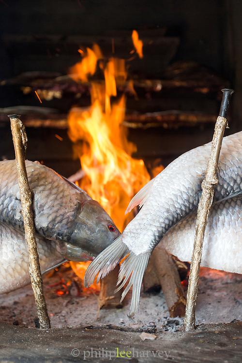 Masgouf river fish cooking on the open fire, Bait Al Baghdadi restaurant, United Arab Emirates