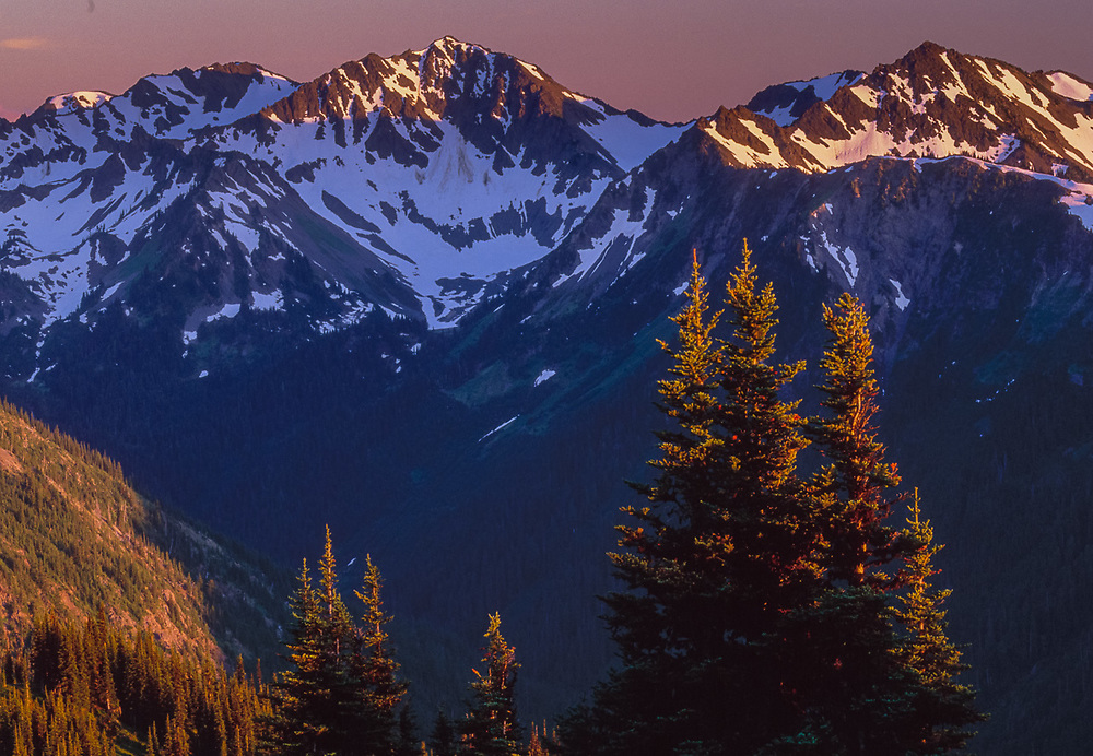 View from Obstruction Point, Lost River Valley, July, Olympic National Park, Washington, USA